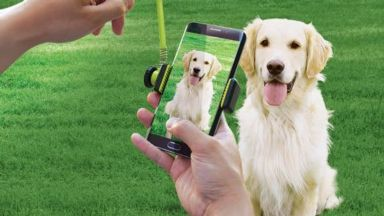 Perfect Pic Pet Treat Launcher